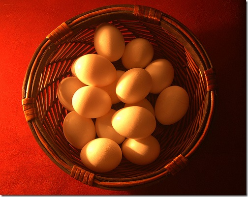 Metaphor of eggs in one basket to convey the risk of focusing in the wrong areas on your job search